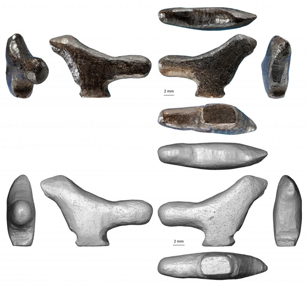 Photo (top) and 3D reconstruction using microtomography (bottom) of the miniature bird sculpture. Its production combined four different techniques (abrasion, gouging, scraping and incision), which left 68 microfacets on the surface of the object. Credit: © Francesco d'Errico and Luc Doyon