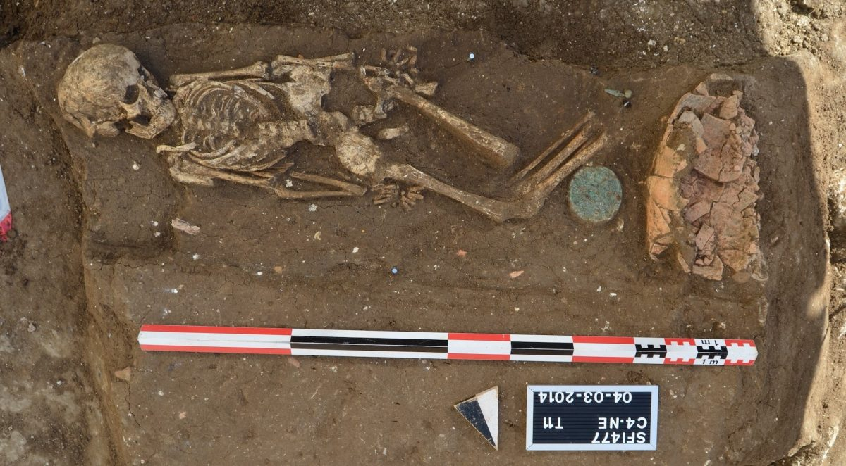 A 2,000-year-old individual sequenced in the study. Photo credits: Directorate General of Antiquities (Lebanon)