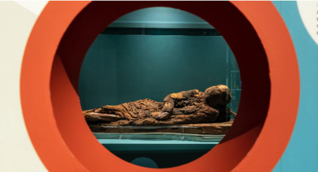 Mummy of an Old Kingdom woman from gEBELEIN, Supp. 16747 of the Museum of Anthropology and Ethnography of the University of Turin. Credit: UniTo.