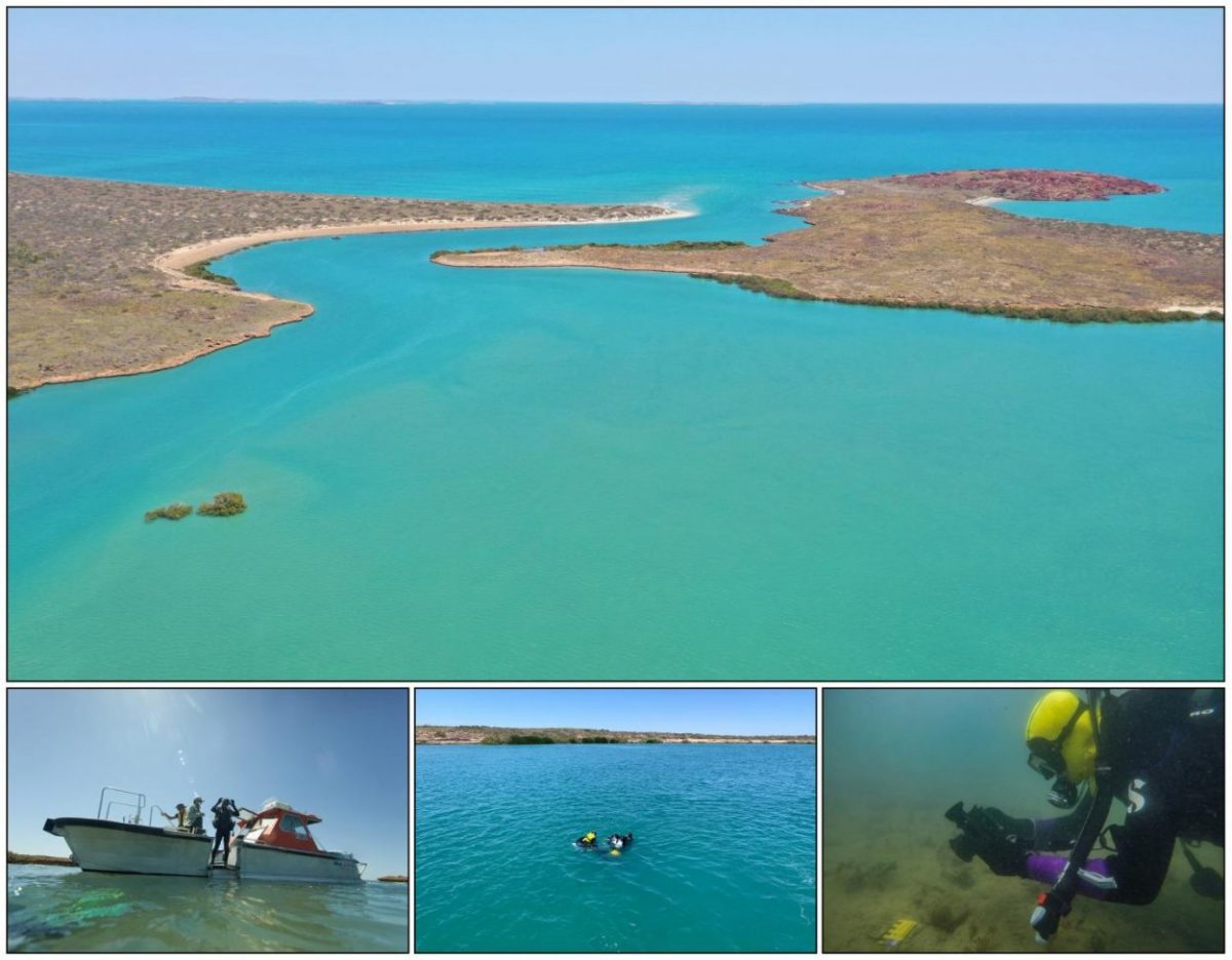 The discoveries were made through a series of archaeological and geophysical surveys in the Dampier Archipelago, as part of the Deep History of Sea Country Project. Image Credit: PLOS ONE