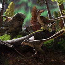 Fossil jawbone from Alaska belongs to dromaeosaurid dinosaur