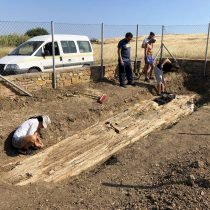 Gigantic trunk of fossilized tree found on Lemnos