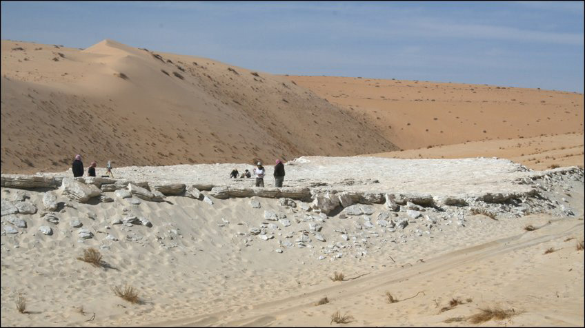 Researchers surveying the Alathar lake, situated within an interdunal depression in the western Nefud Desert, Saudi Arabia © Palaeodeserts Project