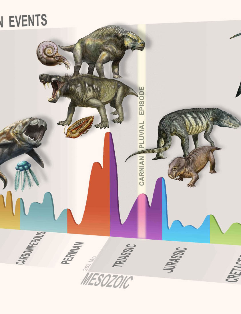 Summary of major extinction events through time, highlighting the new, Carnian Pluvial Episode at 233 million years ago. Credit: © D. Bonadonna/ MUSE, Trento.