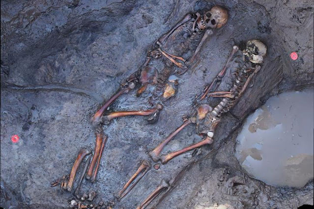 1700 years old skeletons of southsiberian steppe nomads site of Tunnug1. Credit: © Tunnug 1 Research Project