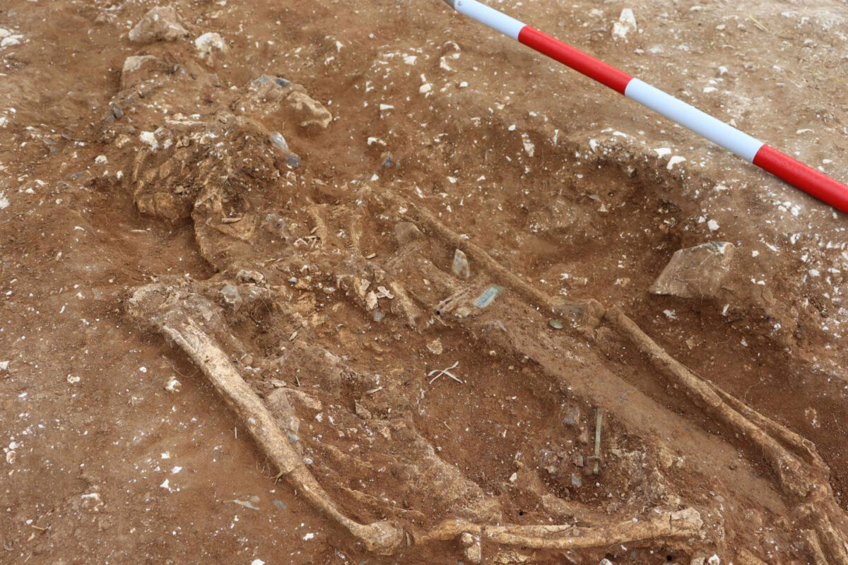 The remains of the warlord. Credit: University of Reading