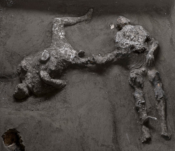 Just as in the first excavation campaign when it was possible to crate plaster casts of the horses, today it has been possible to make casts of the two victims who were found near the cryptoporticus, in the noble part of the villa which the latest investigations have focused on.