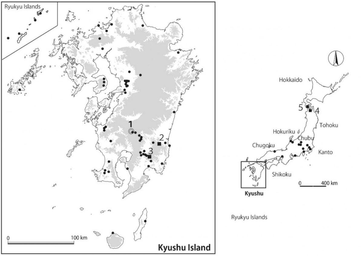 (Left) The location of the Yakushoden site where the pottery with insect (weevil) impressions was discovered is indicated by the number 1. (Other numbers in the image indicate areas discussed in the research paper.) (Right) Map of other maize weevil excavation sites from the Jomon period. Credit : Professor Hiroki Obata
