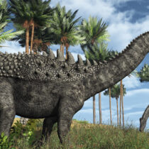 Dinosaurs were not in decline before asteroid hit