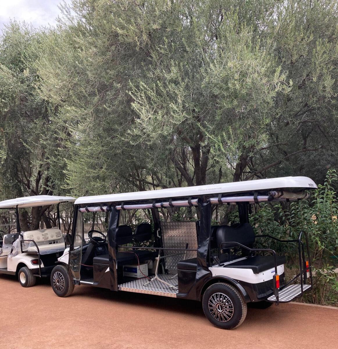 The Golf Cart type vehicles (photo: MOCAS)
