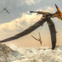 Pterosaur precursors fills a gap in early evolutionary history