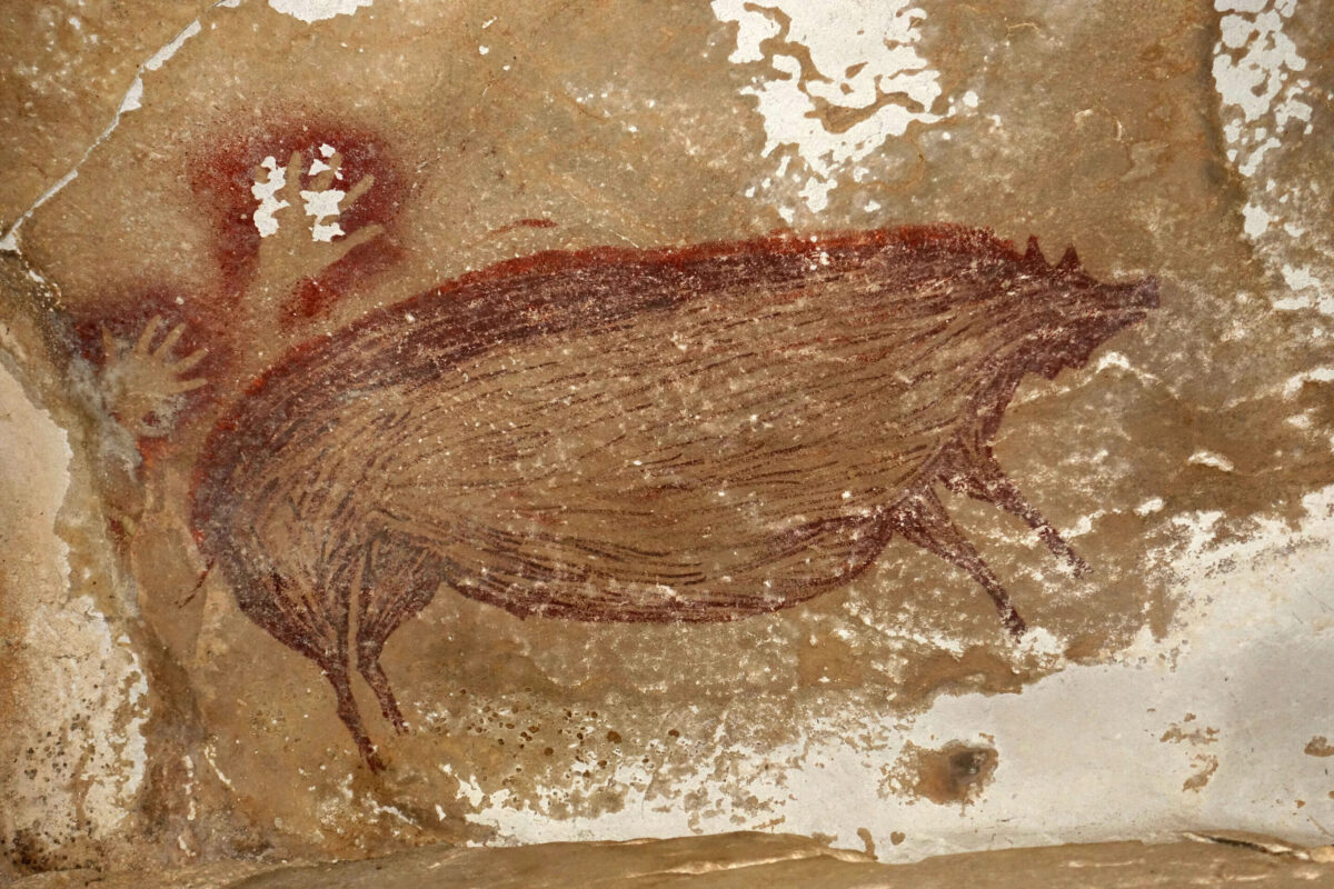 Warty pig painted in an Indonesian cave. (photo: Maxime Aubert)
