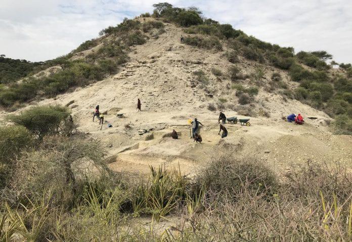 Overview of Ewass Oldupa in Olduvai (Oldupai) Gorge, Tanzania. Michael Petraglia