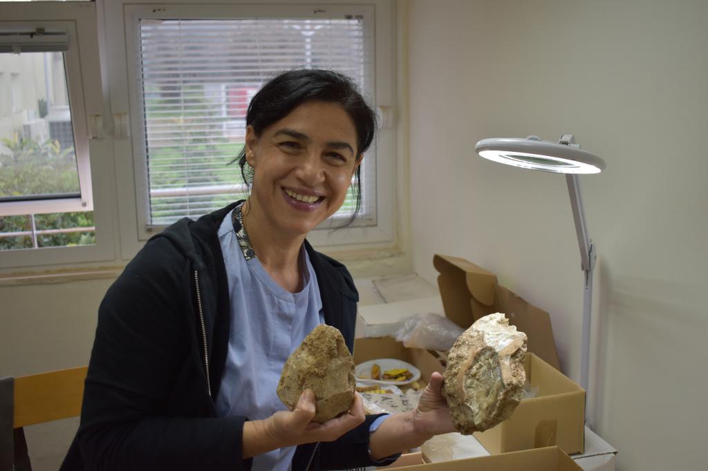 Professor Nena Galanidou, University of Crete PalaeoArch Group Lab, December 2020.