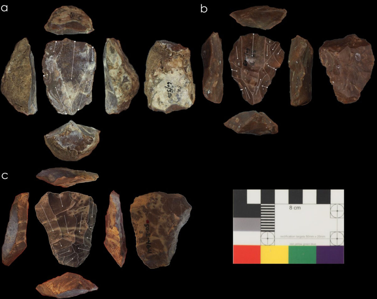 Photos of Nubian Levallois cores associated with Neanderthal fossils © UCL, Institute of Archaeology & courtesy of the Penn Museum, University of Pennsylvania. © Blinkhorn, et al., 2021 / CC BY 4.0