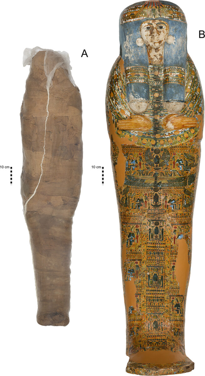 Mummified individual and coffin in the Nicholson Collection of the Chau Chak Wing Museum, University of Sydney. A. Mummified individual, encased in a modern sleeve for conservation, NMR.27.3. B. Coffin lid, NMR.27.1. (Published under a CC BY license, with permission from the Chau Chak Wing Museum, original copyright 2019). doi:10.1371/journal.pone.0245247.g001