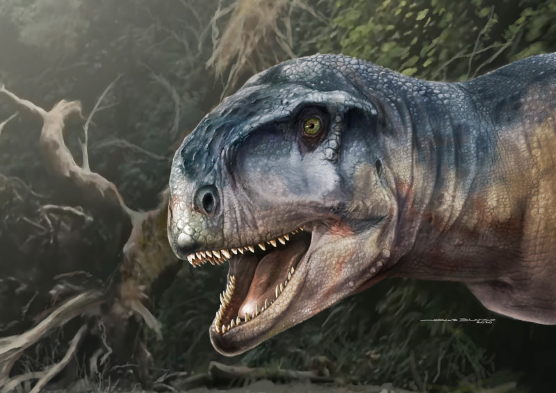 New meat-eating predator discovered, and it ruled in the Late Cretaceous
