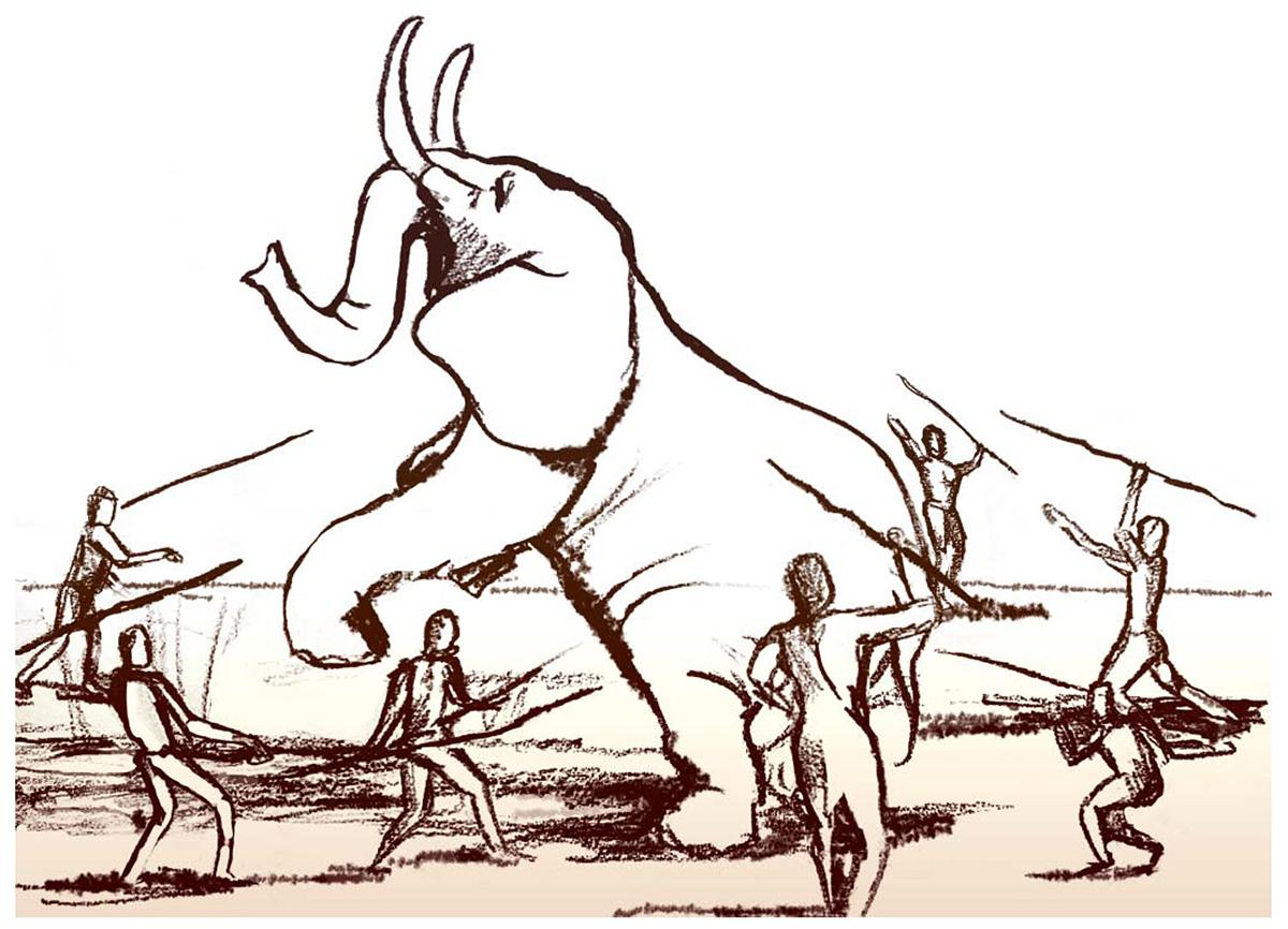 Elephant hunting illustrations. Credit : Dana Ackerfeld