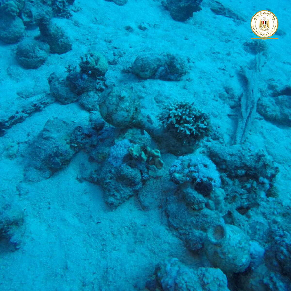 View of the underwater site where the shipwreck was discovered. Credit : Ministry of Antiquities