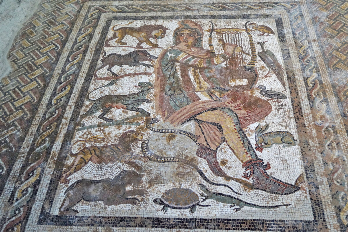 The mosaic depicting the mythical figure of Orpheus charming animals, birds and reptiles with his lyre (photo MOCAS).