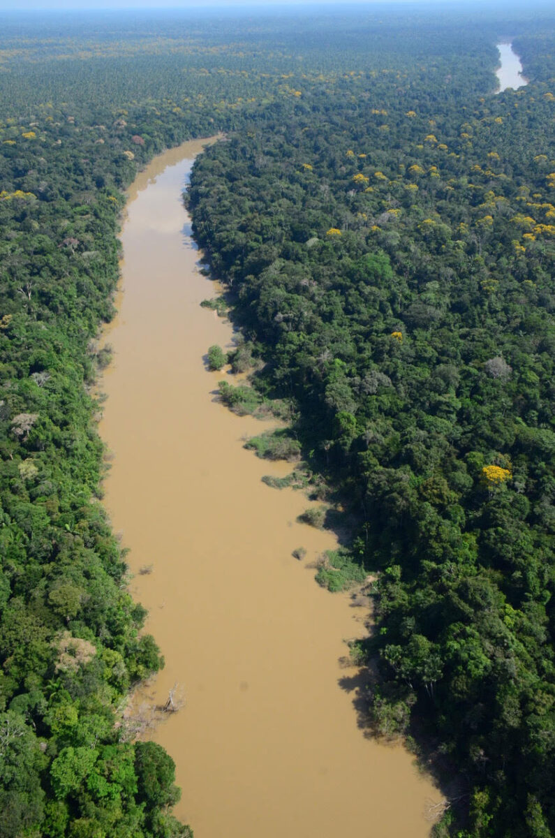 Indigenous peoples were stewards of the Western Amazon