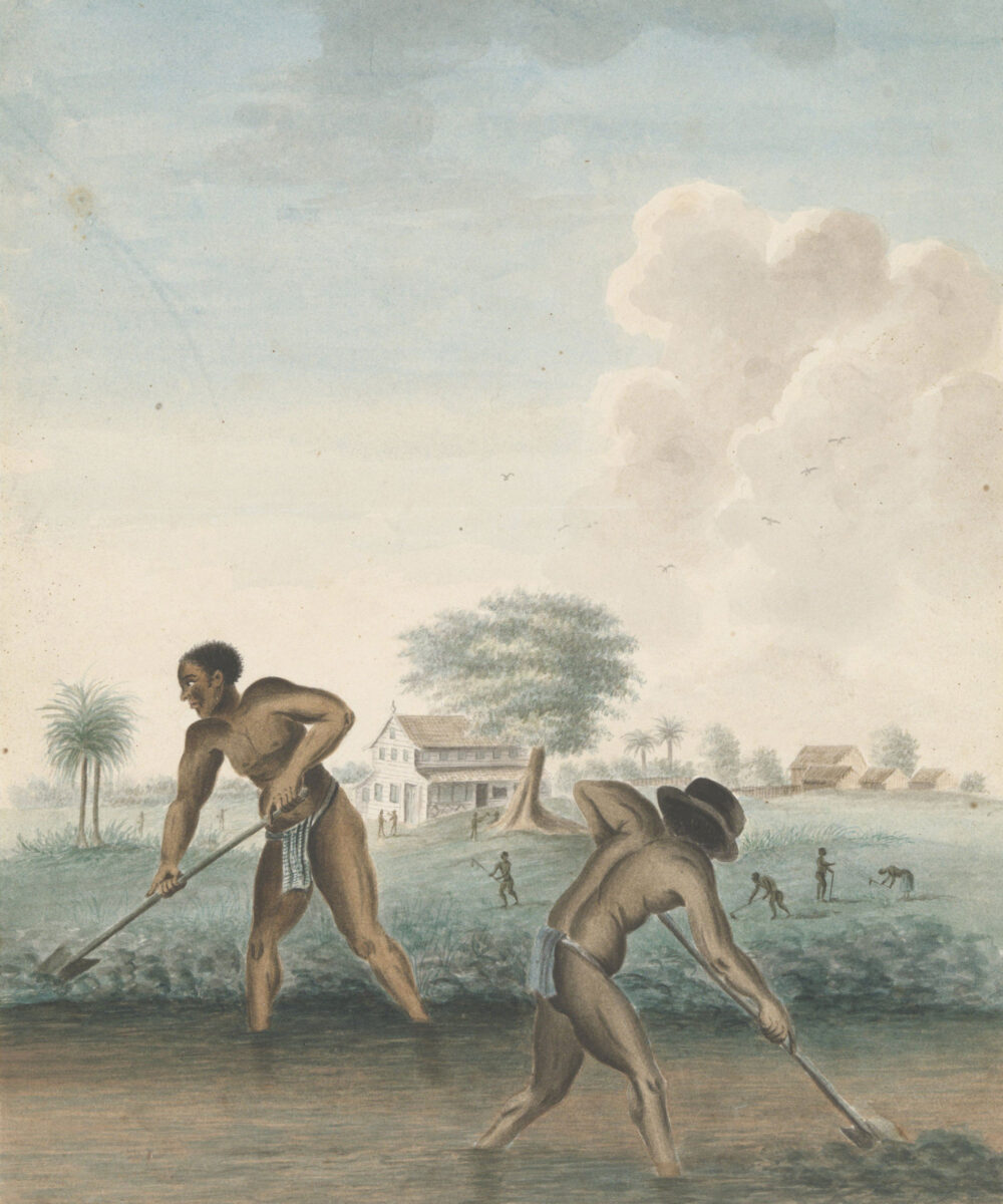 """""""Slavery"""": the new exhibition at the Rijksmuseum"""