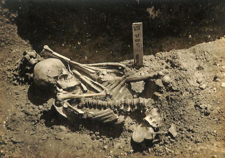 Original excavation photograph of Tsukumo No. 24, courtesy of the Laboratory of Physical Anthropology, Kyoto University. Credit : Kyoto University