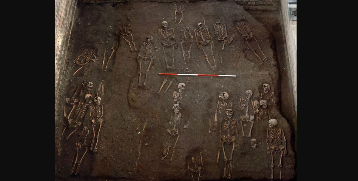 The remains of numerous individuals unearthed on the former site of the Hospital of St. John the Evangelist in Cambridge, taken during the 2010 excavation. Credit : Cambridge Archaeological Unit