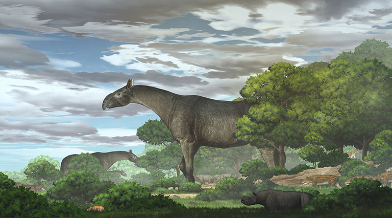 Ecological reconstruction of giant rhinos and their accompanying fauna in the Linxia Basin during the Oligocene (Image by CHEN Yu)
