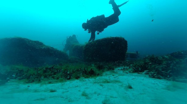 Scuba diver at hunting structure. Credit : UT Arlington.