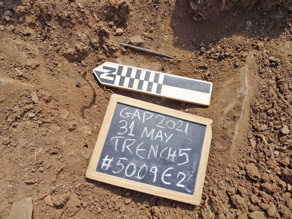 Gourimadi Site, Section 5, stake holes (photo: MOCAS)