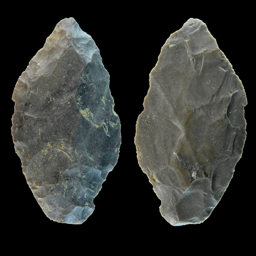 Stone tool tells the story of Neanderthal hunting
