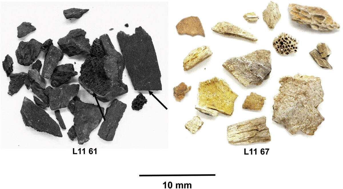 Widespread cultural diffusion of knowledge started 400,000 years ago