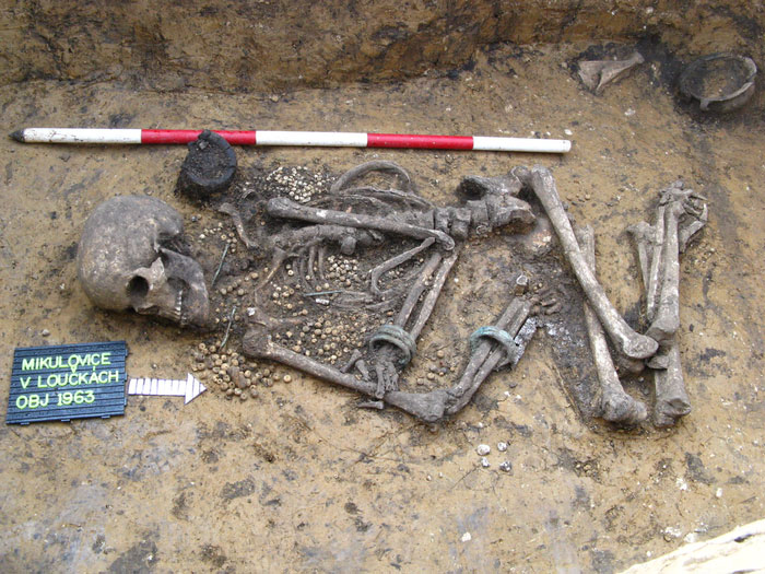 Richly endowed Early Bronze Age burial from Bohemia, Czech Republic. Credit: Michal Ernée