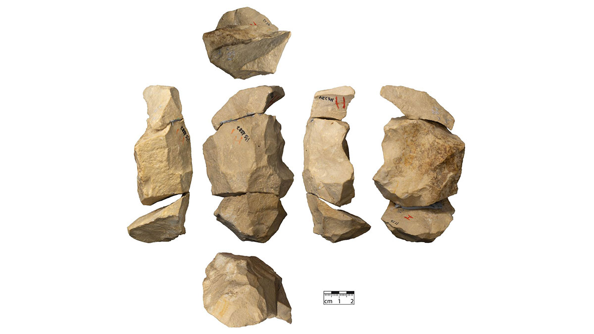 Late Neanderthals used complex tool-making techniques