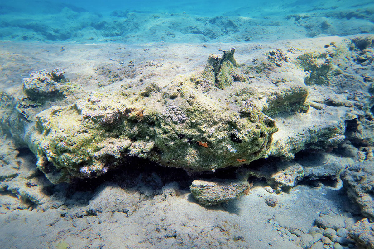 Part of a Minoan jar embedded in the rocky seabed of Kouremenos Bay (photo: MOCAS)