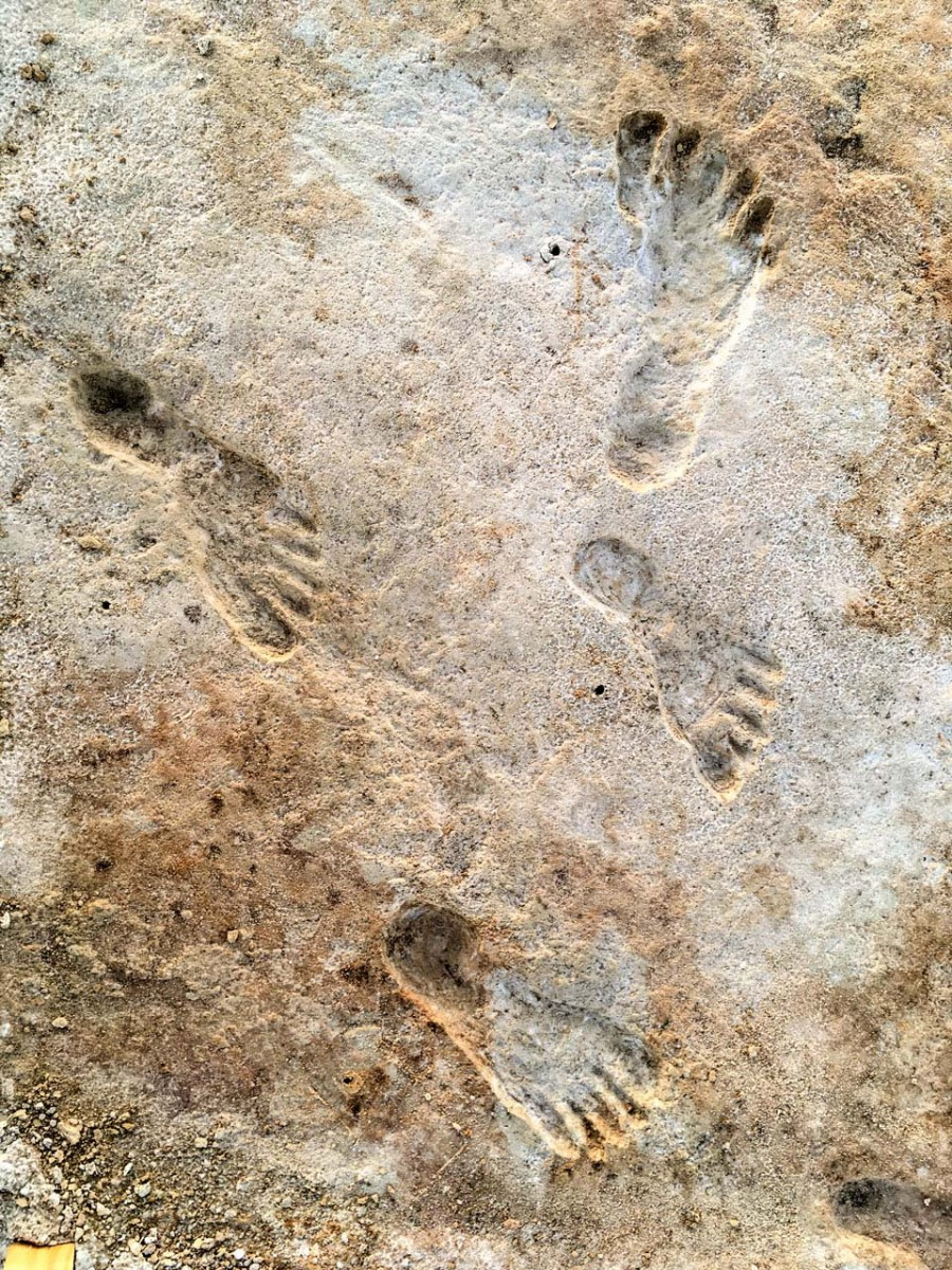 Footprints found at White Sands National Park in New Mexico, providing the earliest evidence of human activity in the Americas.