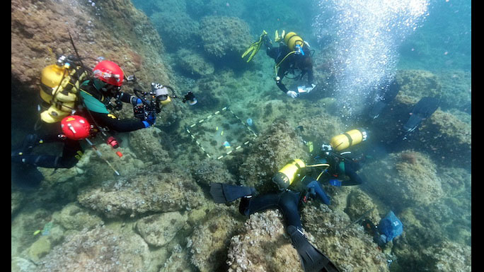 This is one of the largest sets of Roman gold coins found in Spain and Europe, as stated by  Professor in Ancient History Jaime Molina and University of Alicante team leader of the underwater archaeologists working on the wreck.
