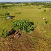 Nearly 500 ancient ceremonial sites found in Southern Mexico