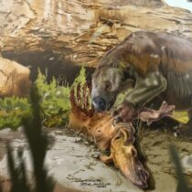 Giant sloth that once roamed South America scavenged for meat